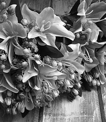 Курьер с лилиями